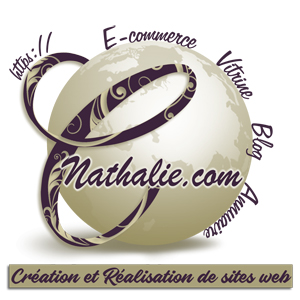 Creation de site web La Ciotat - Antibes Nice Cannes